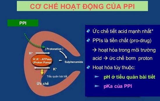 Thuốc ức chế tiết acid PPI