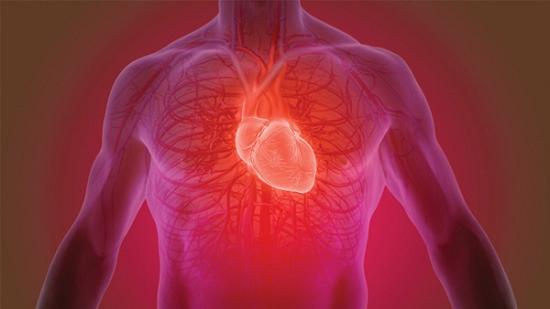 Viêm cơ tim là gì?