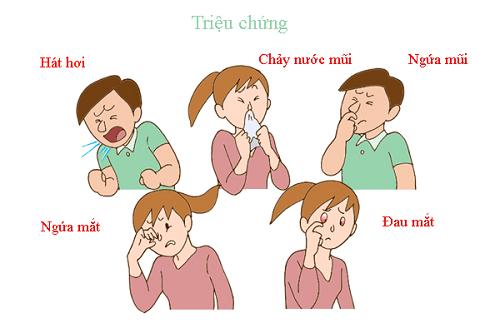 Triệu chứng bệnh viêm mũi dị ứng bội nhiễm nặng nề hơn viêm mũi dị ứng thông thường